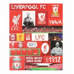 Sada magnetů na ledničku Liverpool FC (typ 20)
